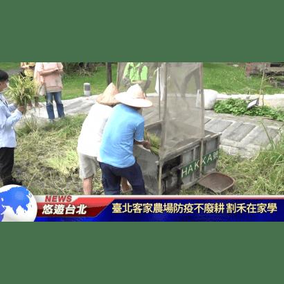 臺北客家農場防疫不廢耕.png